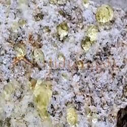Piedra tratada con repelente de Orina Eco larga duración