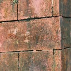 Limpiador antimoho y antialgas para muros y fachadas